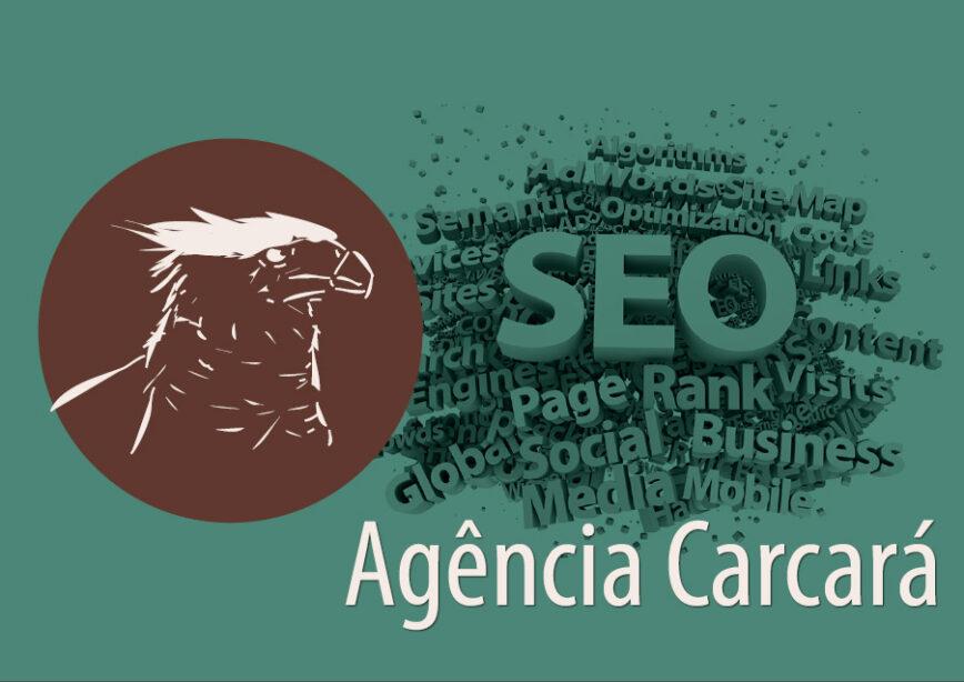 SEO do site da Agência Carcará de publicidade, comunicação e criação web