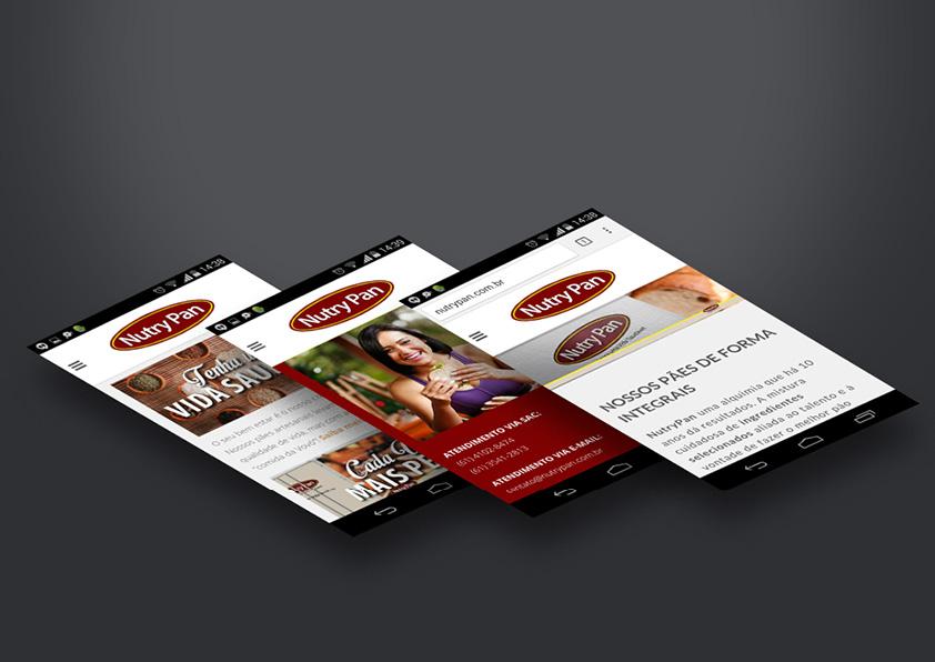 desenvolvimento-web-site-criacao-agencia-publicidade-brasilia-carcará3