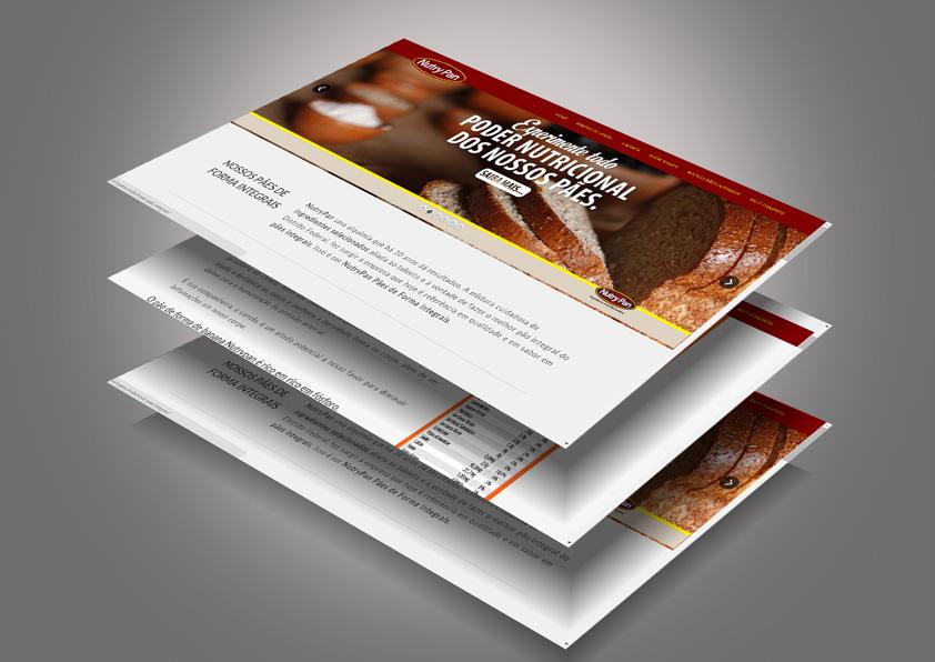 desenvolvimento-web-site-criacao-agencia-publicidade-brasilia-carcará4