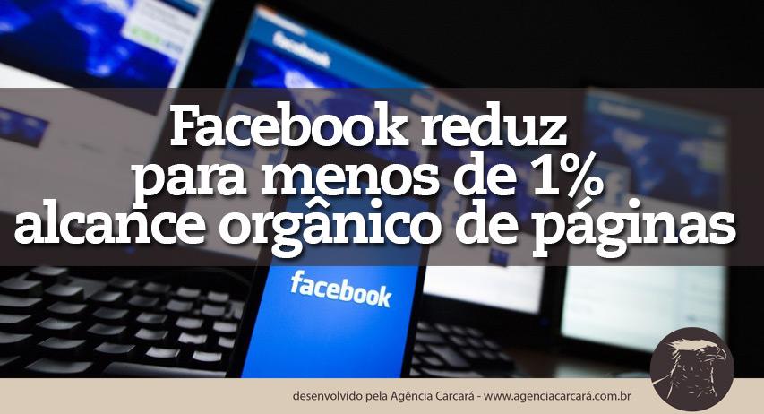 O Facebook diminuiu ainda mais o alcance orgânico de páginas na rede social. Movimento que tem impacto direto em marcas, empresas e produtos que são divulgados por lá. Significa que o Facebook quer que as pessoas paguem para que suas páginas atinjam os seus clientes.