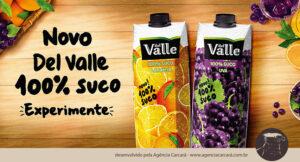 Jogada de marketing? Coca Cola lança Del Valle com 100% Suco, uma bebida feita apenas com a fruta. O objetivo, segundo a empresa, é incrementar o portfólio da marca e oferecer mais opções para o consumidor que busca cada vez mais alimentação mais saudável.