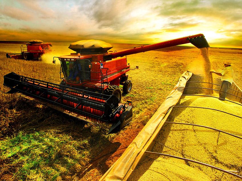 Confira a solução que a Agência Carcará tem para auxiliar na divulgação da sua empresa de agronegócio em Brasília com marketing digital e publicidade.