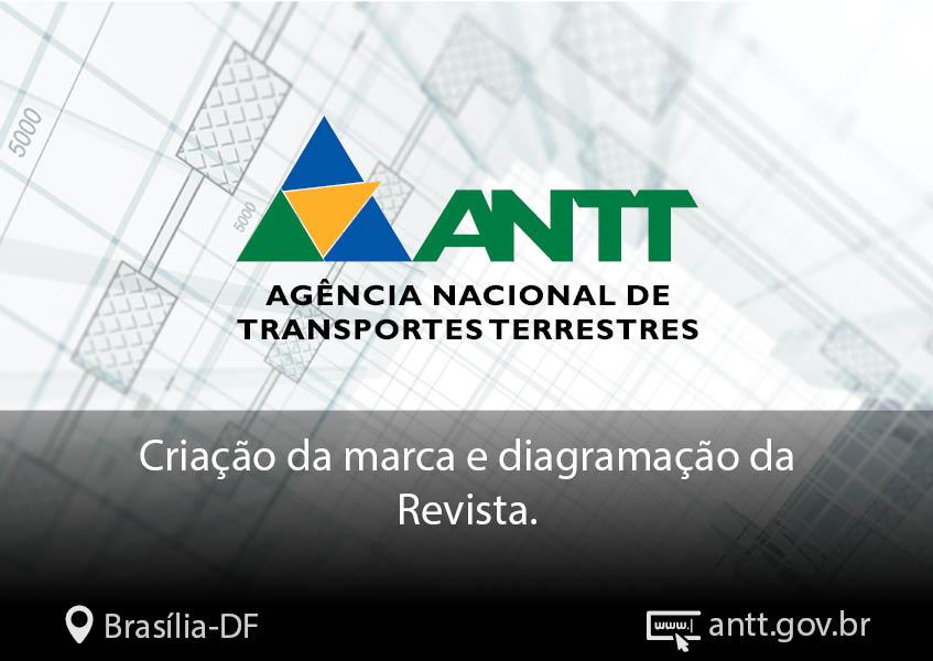 capa_portifolio_agencia_carcara_847x600px16