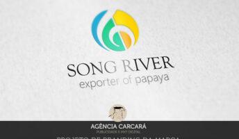 Modernização da marca da exportadora Song River, localizada no Estado da Bahia na cidadeLuís Eduardo Magalhães