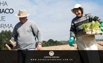 A Agência Carcará como uma das agências da Souza Cruz e British American Tobacco no Brasil, fica radiante em ver a campanha de 70 anos do SindiTabaco: Visão que Transforma na TV.