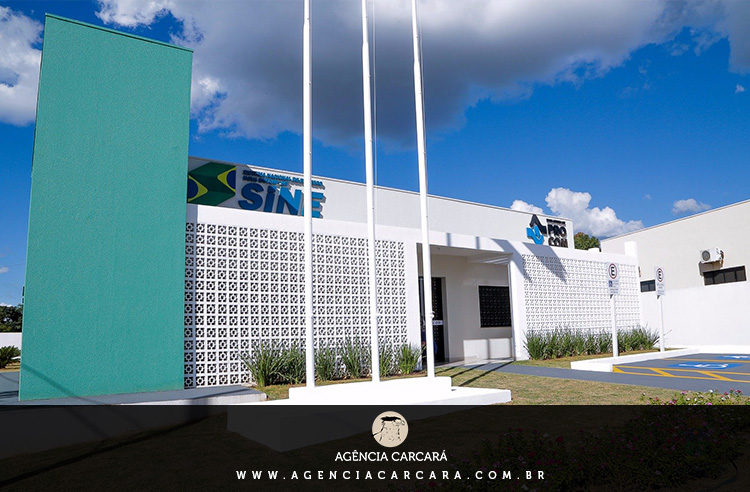 A modernização do logotipo do SINE, Sistema Nacional de Empregos, teve seu início em 2015 pela Carcará e aos poucos as Agências dos Trabalhadores começam a receber a nova aplicação criada para promover o novo momento do SINE no Brasil.