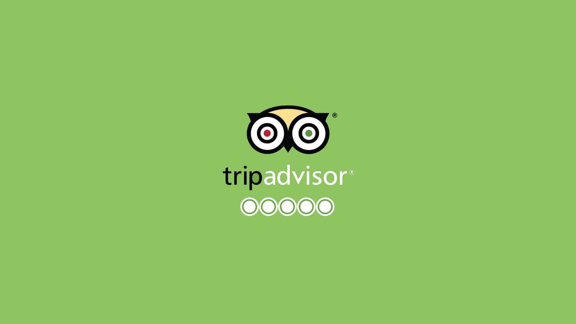 Gestão de reputação TripAdvisor: as avaliações de hóspedes de hotéis e de críticas em restaurantes pelo TripAdvisor está revolucionando como empresas se relacionam com seus clientes finais. Melhore a reputação online de sua empresa.