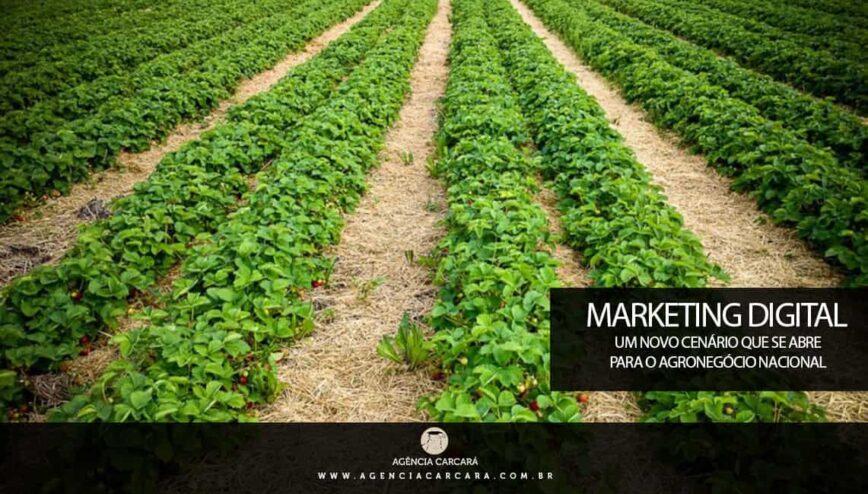 Aos poucos empresários concordam com um ponto: o marketing digital chegou para ficar no mundo do agronegócio no Brasil. E muitas empresas já investem pesadamente na publicidade digital.