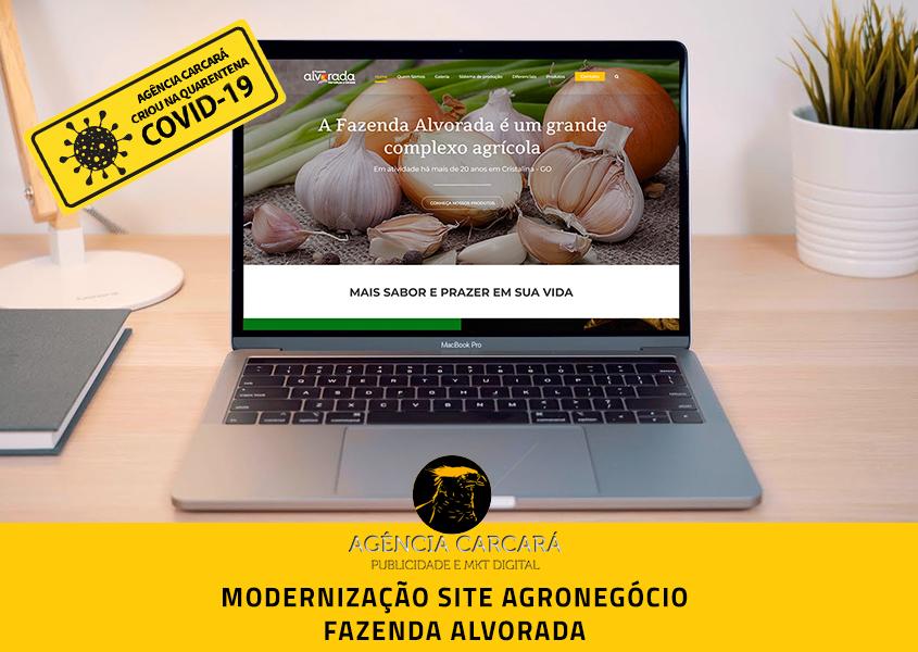 Modernização do site da Fazenda Alvorada no Goiás. Talvez o principal elemento para o marketing no agronegócio é um website estruturado.