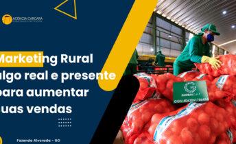 Assunto cada vez mais debatido o Marketing Rural deve ser algo presente no dia-a-dia da propriedade/fazenda agronegócio