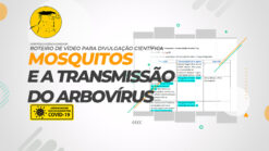 Elaboração do roteiro para vídeo de divulgação científica da UNB: Mosquitos e a transmissão de arbovírus