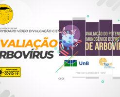 Elaboração do Storyboard para o vídeo de divulgação científica da UNB: Avaliação do potencial imunogênico de proteínas de arbovírus