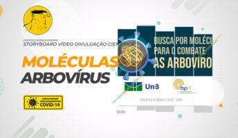 Elaboração do Storyboard para o vídeo de divulgação científica da UNB: Busca por moléculas para o combate as arboviroses