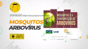 Elaboração do Storyboard para o vídeo de divulgação científica da UNB: Mosquitos e a transmissão de arbovírus