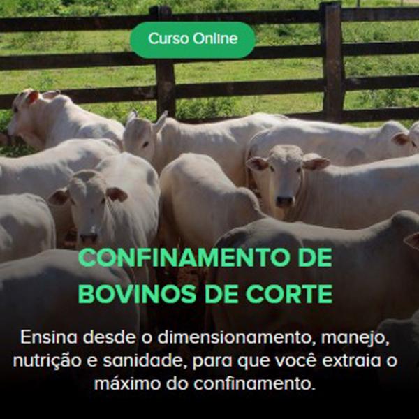 Confinamento de bovinos: dimensionamento, manejo, nutrição e sanidade.Um curso IEPEC de sucesso totalmente online com mais de 500 alunos durante a pandemia
