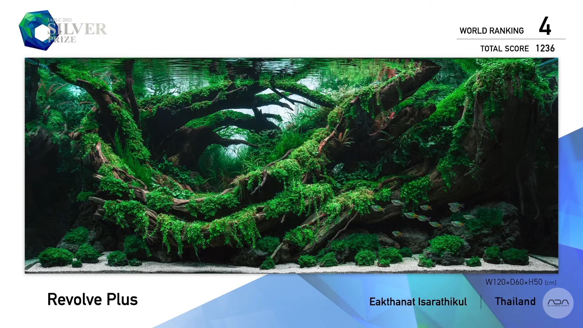 Confira os resultados do concurso de aquapaisagismo IAPLC 2021 da ADA Aquatic Plants Layout Contest os mais lindos aquários plantados do ano!
